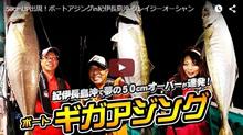 """50cmUP出現!ボートアジングin紀伊長島沖-クレイジーオーシャン"""""""